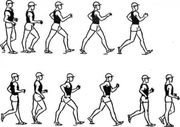 Спортивная ходьба картинки черно белые